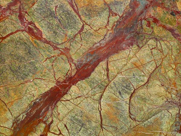 Patterns of Nature V
