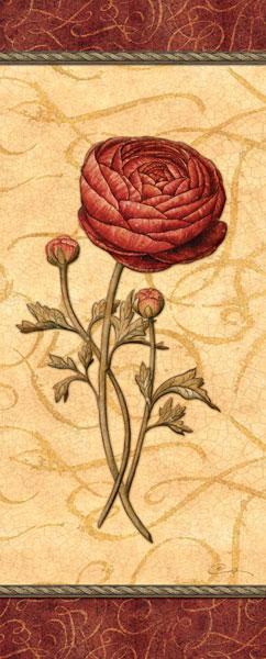 Red Passion Renonculus