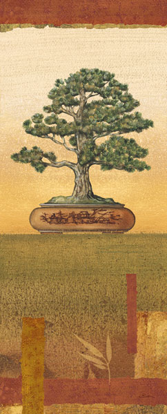 Bonsai I