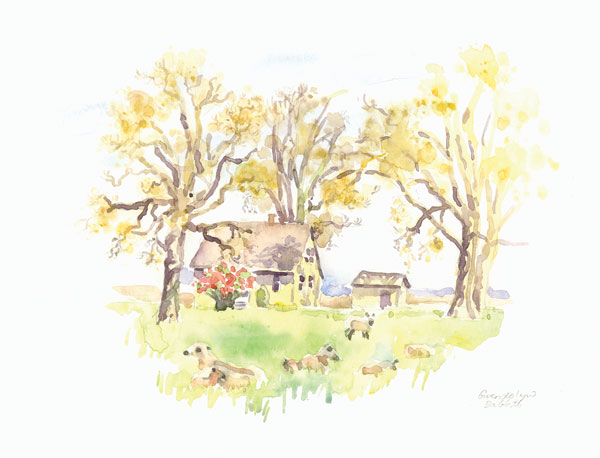 Jane's Barn II