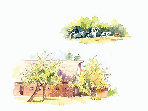 Ridgefield Barn II