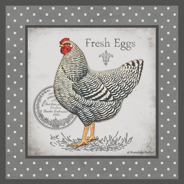 Farm Fresh Eggs II