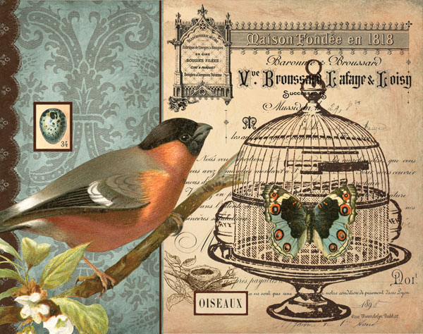 Bird & Cage I