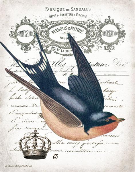 French Swallow II