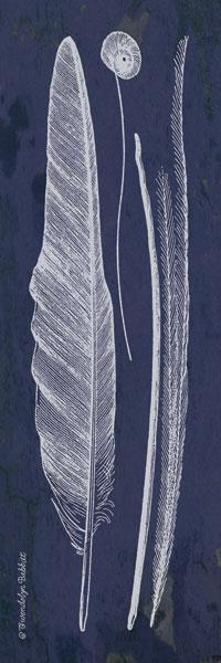 Indigo Feathers III