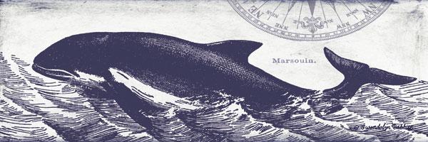Whale on Cream II