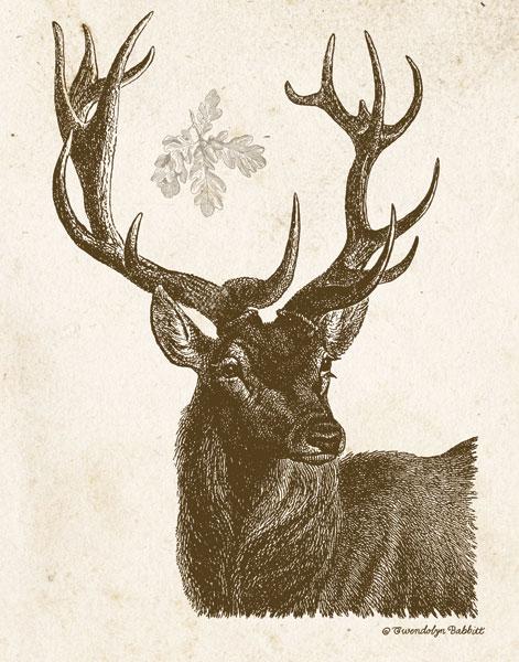 Neutral Deer I