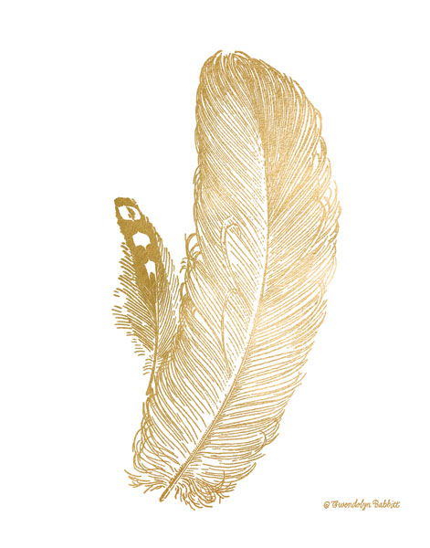 Feather on White I