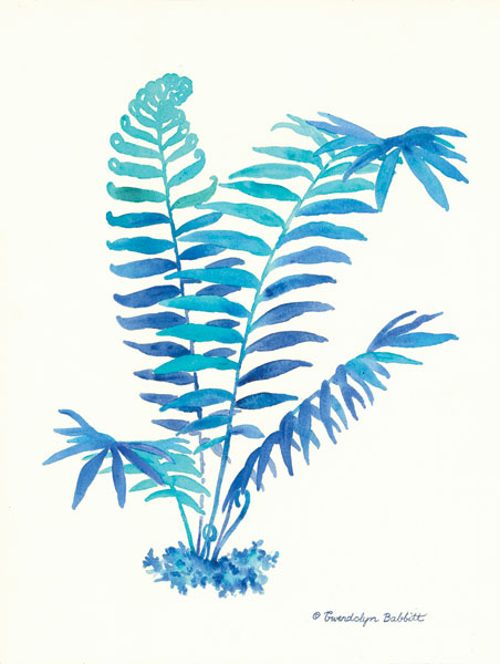 Ombre Fern I