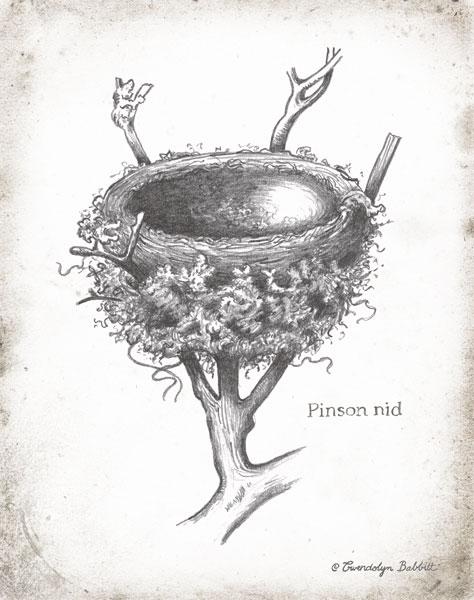 French Bird Nest II