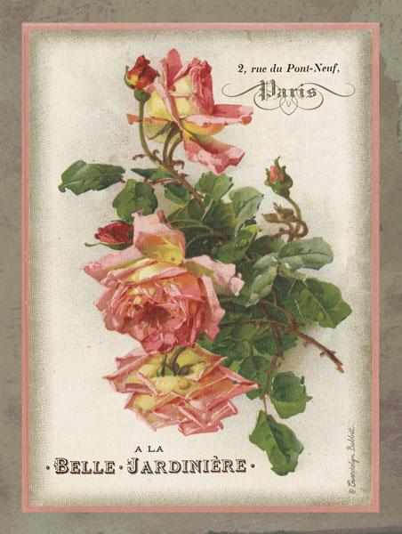 French Rose I
