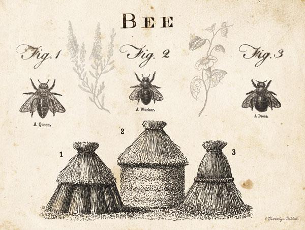 Bee Chart I