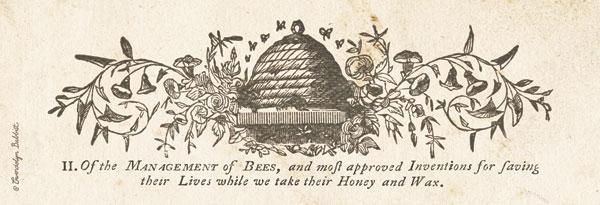 Bee Hive Panel