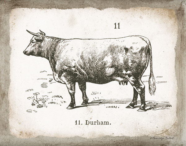 French Cow II