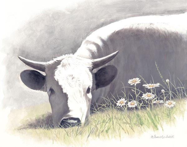 Sweet Bull