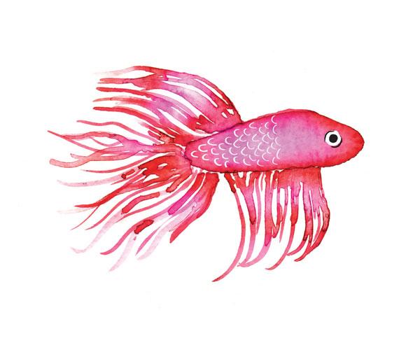 Deep Sea Pink Fish