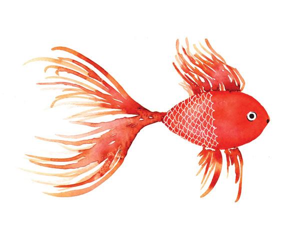 Deep Sea Red Fish
