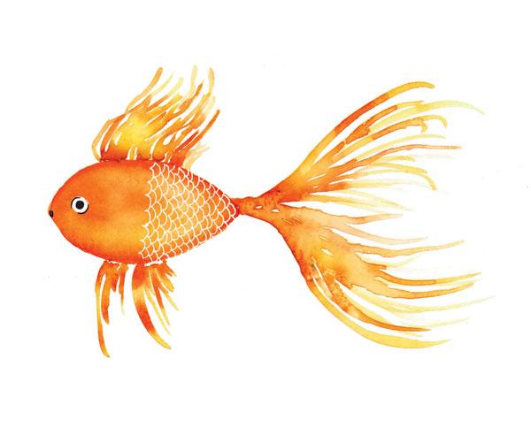 Deep Sea Yellow Fish