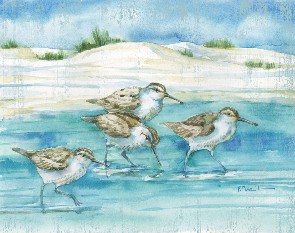 Sandy Sandpipers I