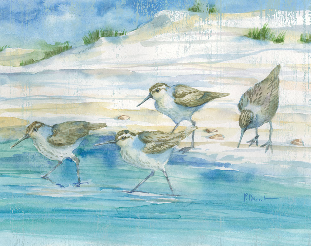 Sandy Sandpipers II