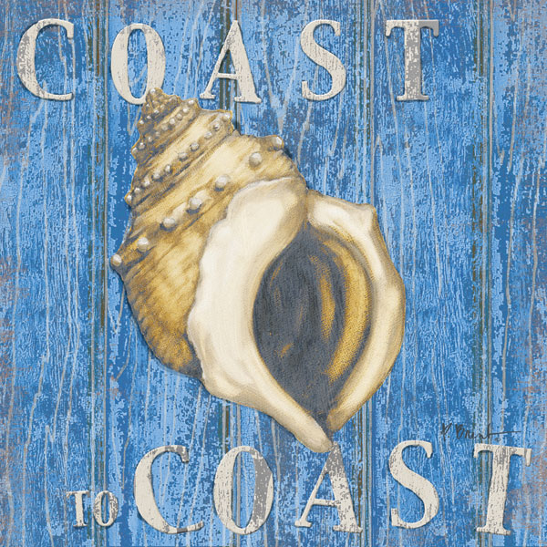 Coastal USA Conch