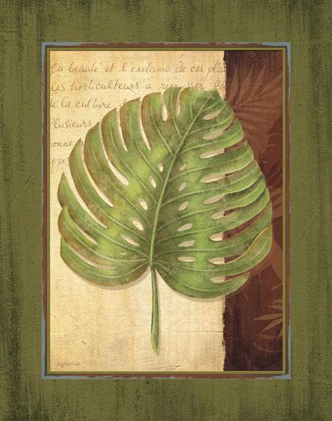 Palm Tropical IV