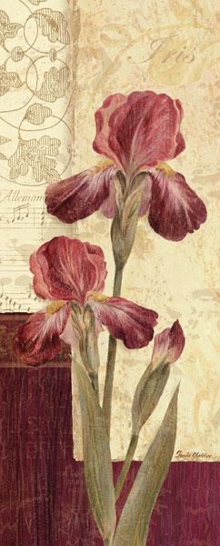 Quattro Sonata III