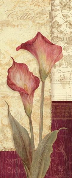 Quattro Sonata IV