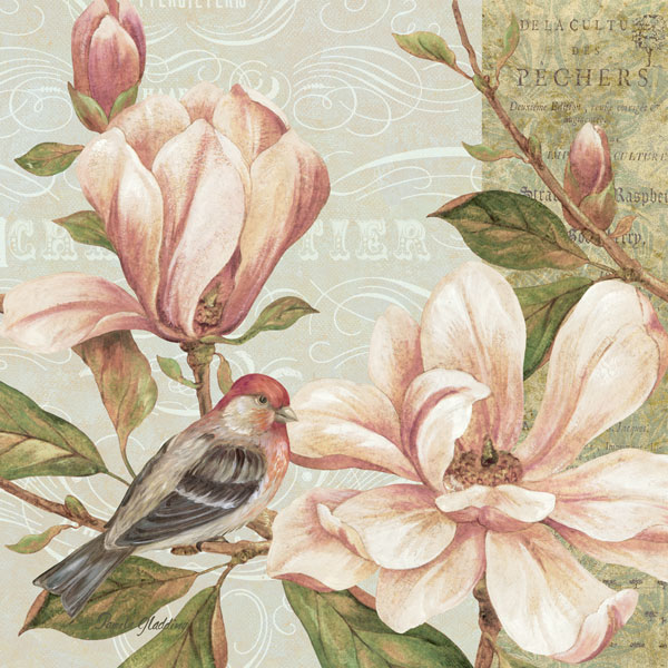 Magnolia Collage II