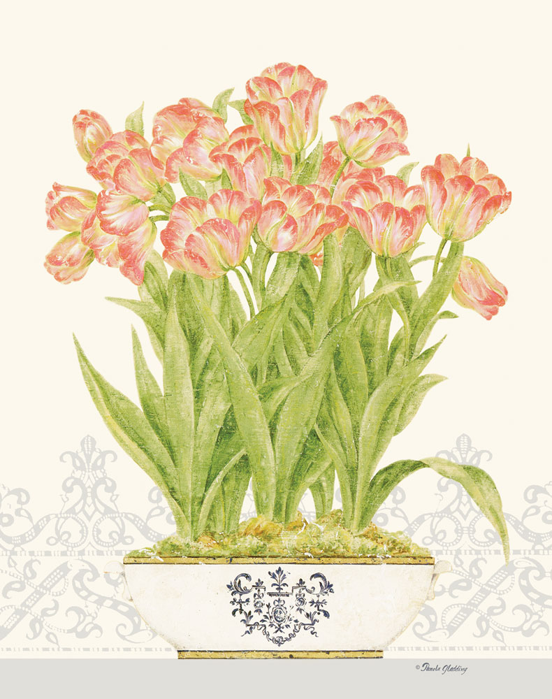 Imperial Tulips