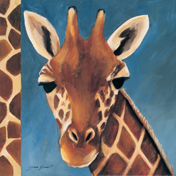 Exotic Giraffe