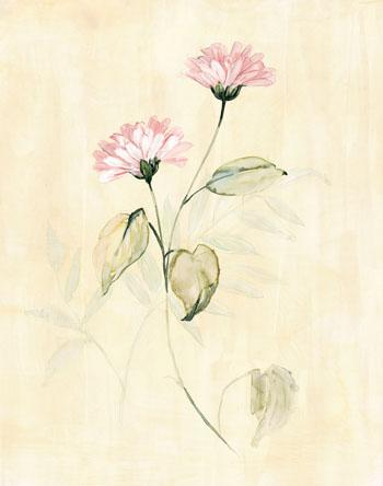 Summer Flowers III