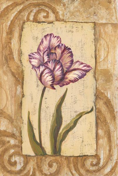 Classic Tulip I