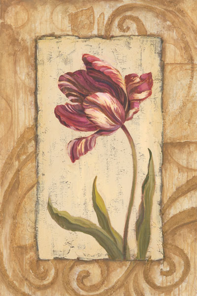 Classic Tulip II