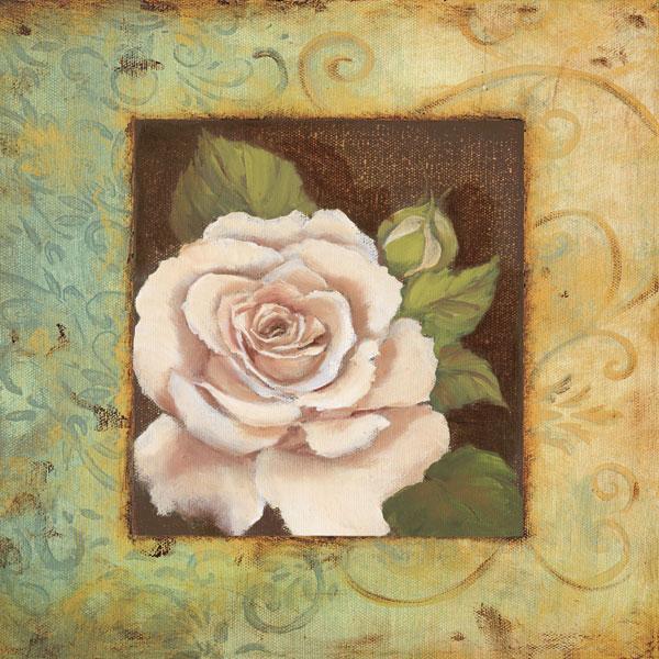 Antique Rose III
