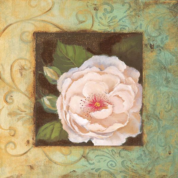 Antique Rose IV