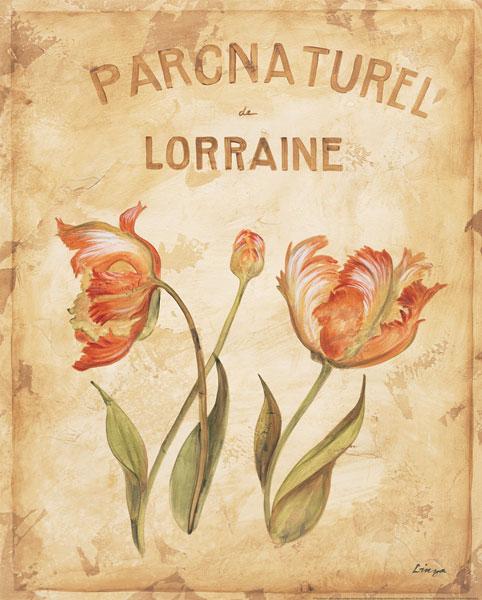 Parcnature III