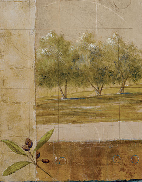 Olive Groves I