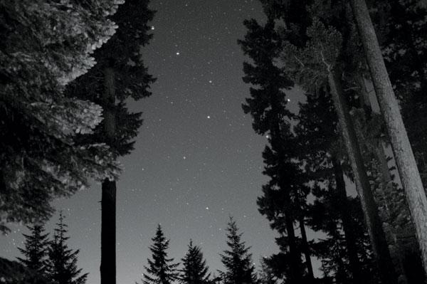 BW Starry Night I