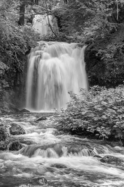 Twin Falls BW