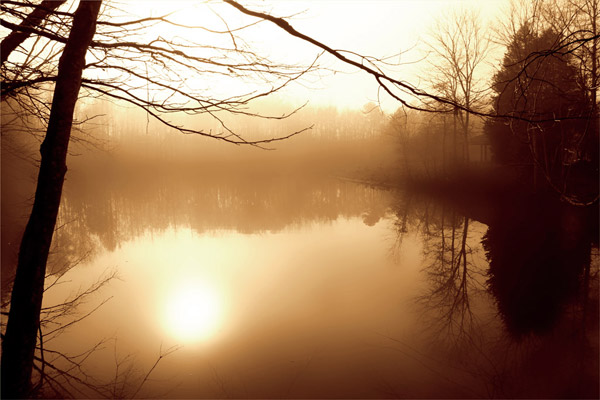 Fog on Shelly Lake II