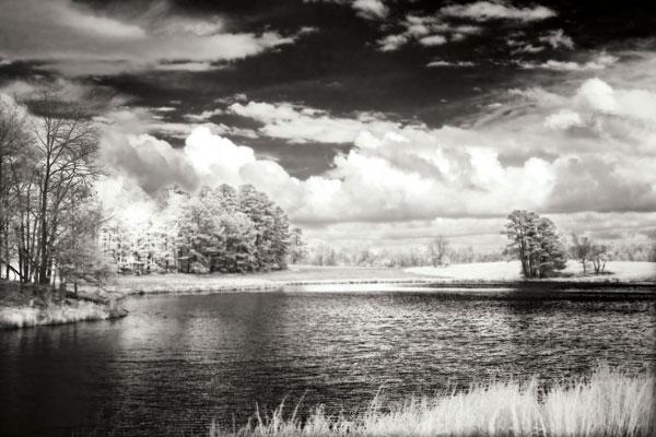 Shearon Lake II