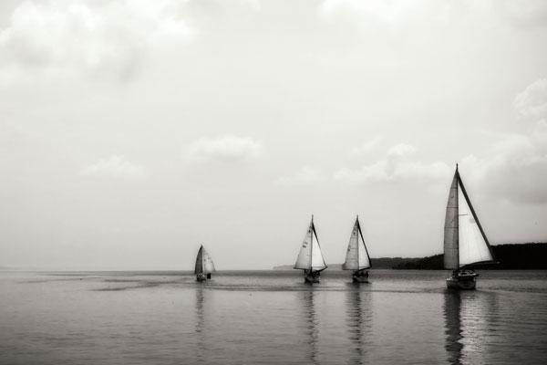 On the Potomac II