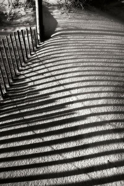 Dunes Fence V