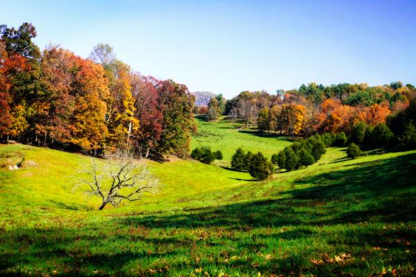 Virginia Hills I