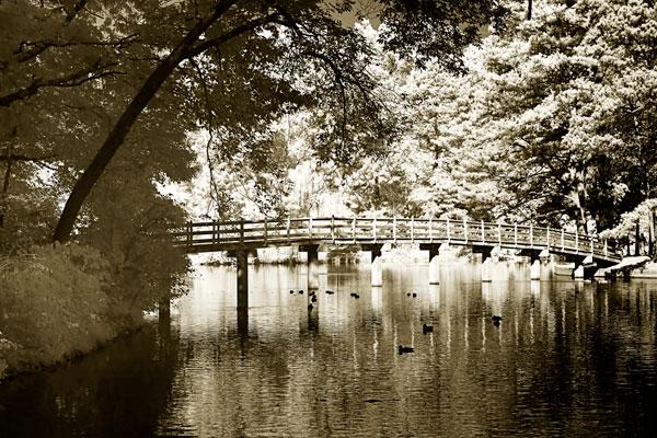 Westhampton Lake II