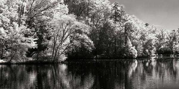 Cherokee Lake II