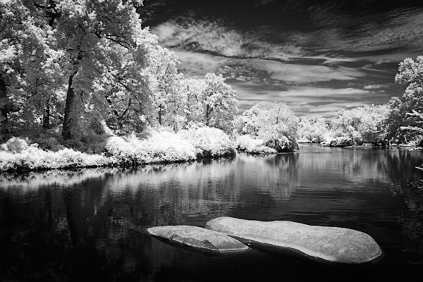 Bryan Lake III