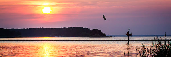Potomac Sunset II