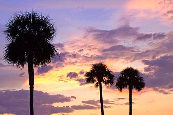 San Marcos Sunset 4